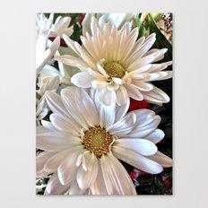 Daisy Darlings Canvas Print