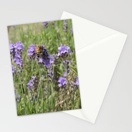 Sweet Bee with lavender Stationery Cards