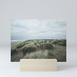 the dunes Mini Art Print
