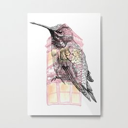 Urban Hummingbird Metal Print