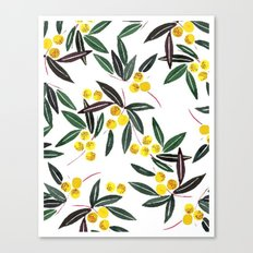C54 Canvas Print
