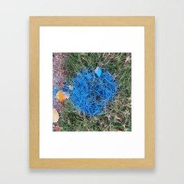 NVSV SPCS_blue grass Framed Art Print