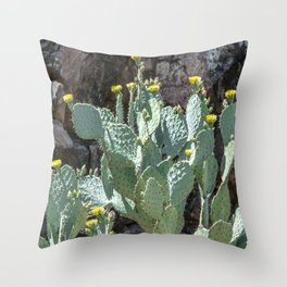 """Prickly Pear Canyon"" by Murray Bolesta Throw Pillow"