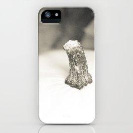 Calabaza blanca iPhone Case