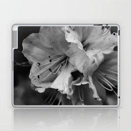 Timeless Black & White  Laptop & iPad Skin