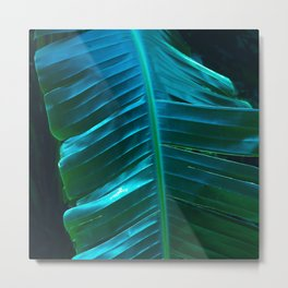 Fine Art Exquisite Palm Leaf In Turquoise Blue Metal Print