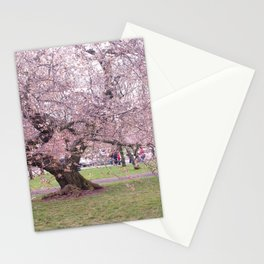 AAN the day unwinds Stationery Cards