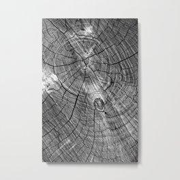 Ageless 02 Metal Print