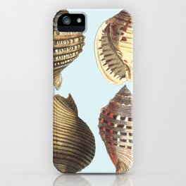 shell sea iPhone Case