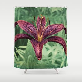 Red Lily with Raindrops A200 Shower Curtain