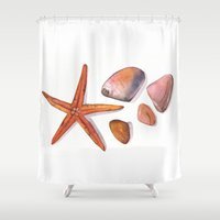 shells Shower Curtains featuring Shells by LouiseanneDem
