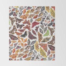 Saturniid Moths of North America Pattern Throw Blanket