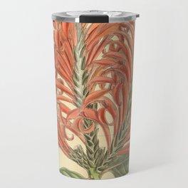Aphelandra tetragona, Acanthaceae Travel Mug