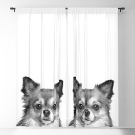 Black and White Chihuahua Blackout Curtain