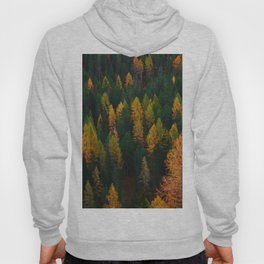 The Evergreens (Color) Hoody