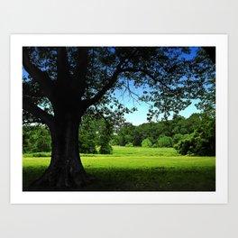 Landscape Leggings Art Print