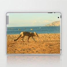 Fox on the beach Laptop & iPad Skin
