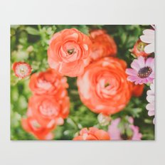 The joy of hot red flowers Canvas Print