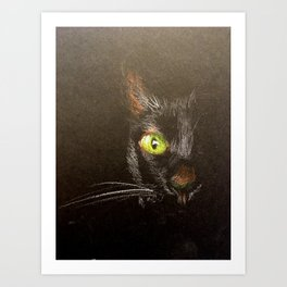 Black cat 3 Art Print