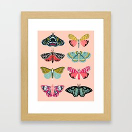 Lepidoptery No. 1 by Andrea Lauren  Framed Art Print