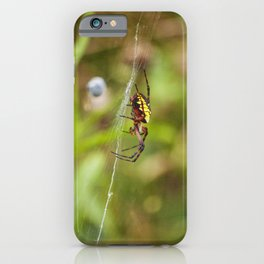 Yellow and Black Argiope iPhone Case