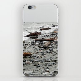 Driftwood Beach after the Storm iPhone Skin