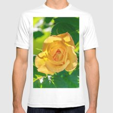 Gold rose Mens Fitted Tee MEDIUM White