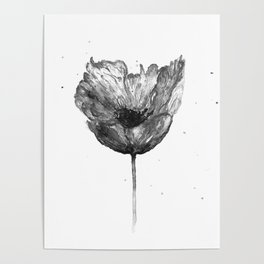 Flower 2, black and white Poster