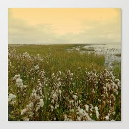 Country by the sea Canvas Print