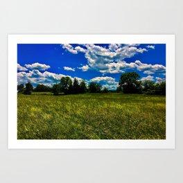 Open Field near Treeline Art Print