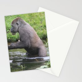 Gorilla Entering A Small Lake Stationery Cards