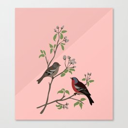 Peaceful harmony in the cherry tree - Illustration Canvas Print