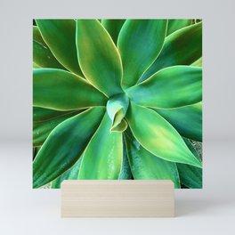 Elegant Sophisticated Succulent Mini Art Print