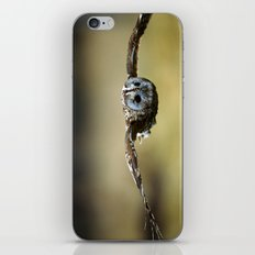 FLIGHT OF THE TAWNY OWL iPhone & iPod Skin