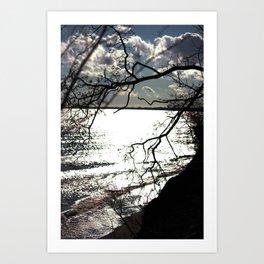 Vile Branches Art Print