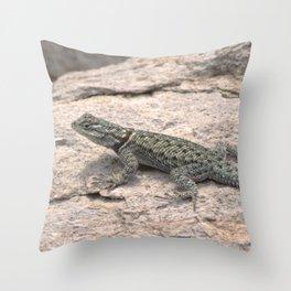 Desert Spiny Lizard, No. 2 Throw Pillow
