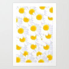 Daisy cluster Art Print