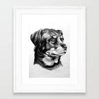 rottweiler Framed Art Prints featuring Rottweiler Devotion by Patricia Howitt