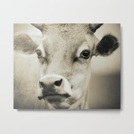 HELLO COW - Old Friends Collection Metal Print