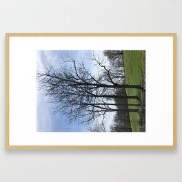 Trees in maysville kentucky Framed Art Print