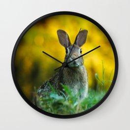 Rabbit   Lapin Wall Clock