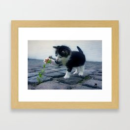 Come Play With Me Framed Art Print