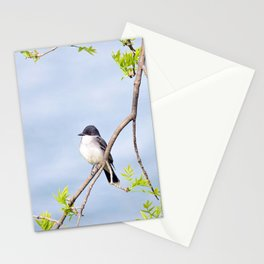 Spring King Stationery Cards