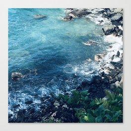 Tropical Paradise Pacific Ocean Cove Canvas Print