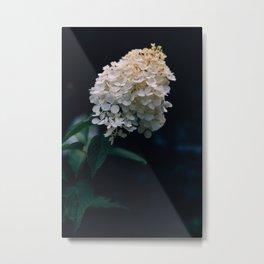 White darkness Metal Print
