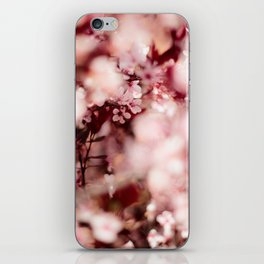 Pink Blooming Blossom iPhone Skin