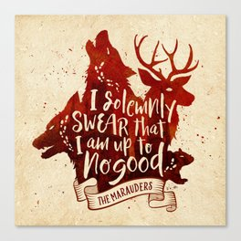 I solemnly swear Canvas Print