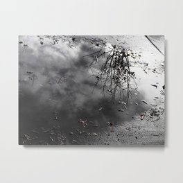 Cloudy Day Reflection Metal Print