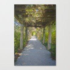 Perfect pathway Canvas Print