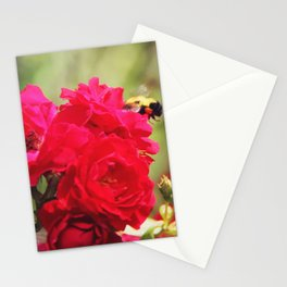 Sweet Rose Honey Bee Stationery Cards
